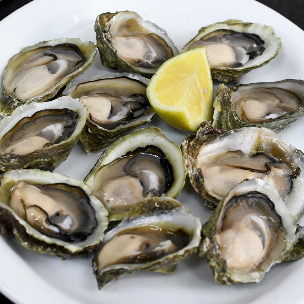 Pack 25 ostras chicas   Maribérico – Mariscos Pescados Comida Preparada